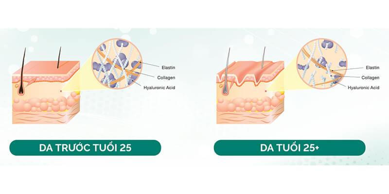 nghiên cứu làn da ở tuổi 25 sẽ ra sao để cùng chăm sóc da thật tốt
